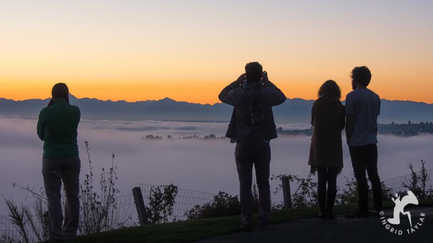 Autumn Fog in Seattle