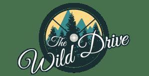 wild drive blog lifestyle design