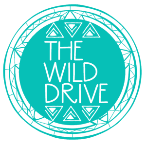 the wild drive blog design a life you love living