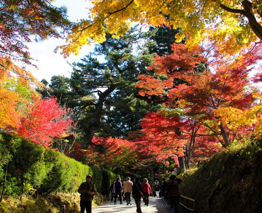 Japan is beautiful during any time of the year