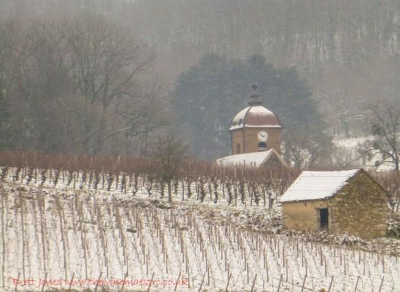 Snowy Jura vineyard