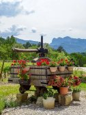 Kickstarting Wines of the French Alps