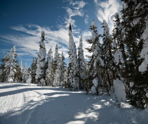 Snowmobiling up Two Top Mountain