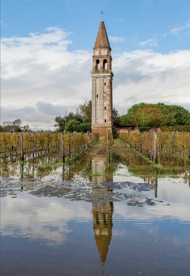 Acqua alta regularly floods the Venissa vineyards