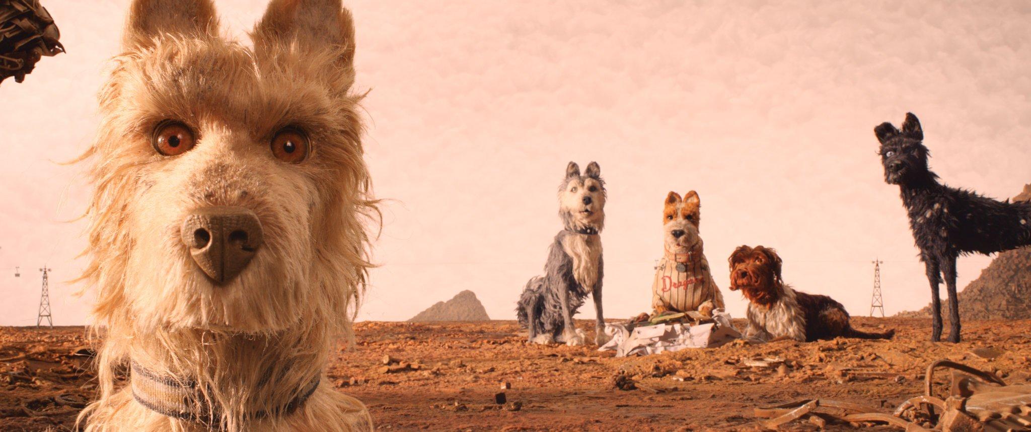 L'isola dei cani, un'opera di rielaborazione creativa dall'immaginario di Wes Anderson