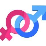 educazione di genere