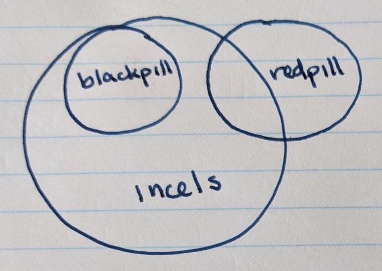 rappresentazione schematica degli incel