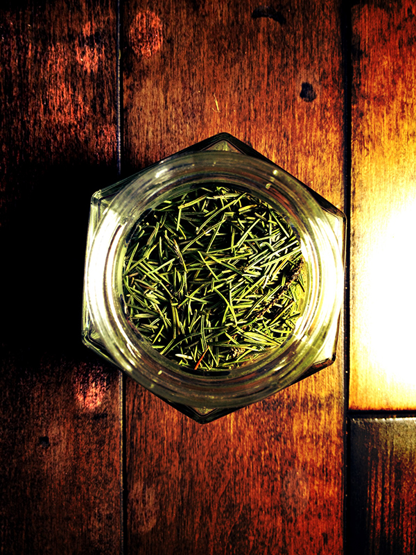 Witches Herbs Pine Needles