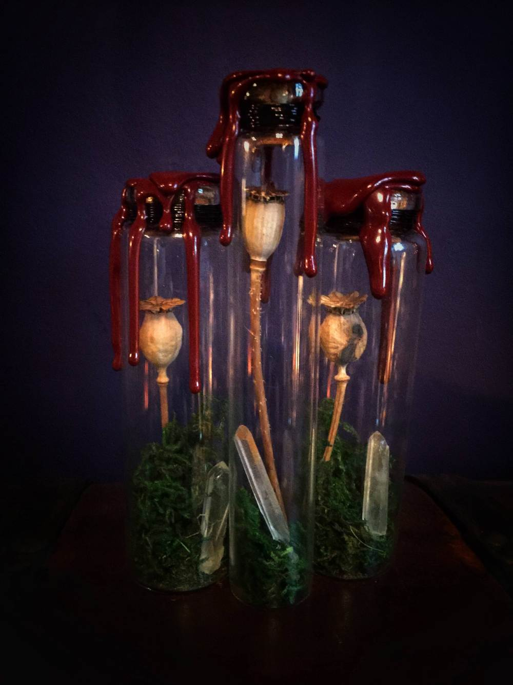 The Poppy Reliquary