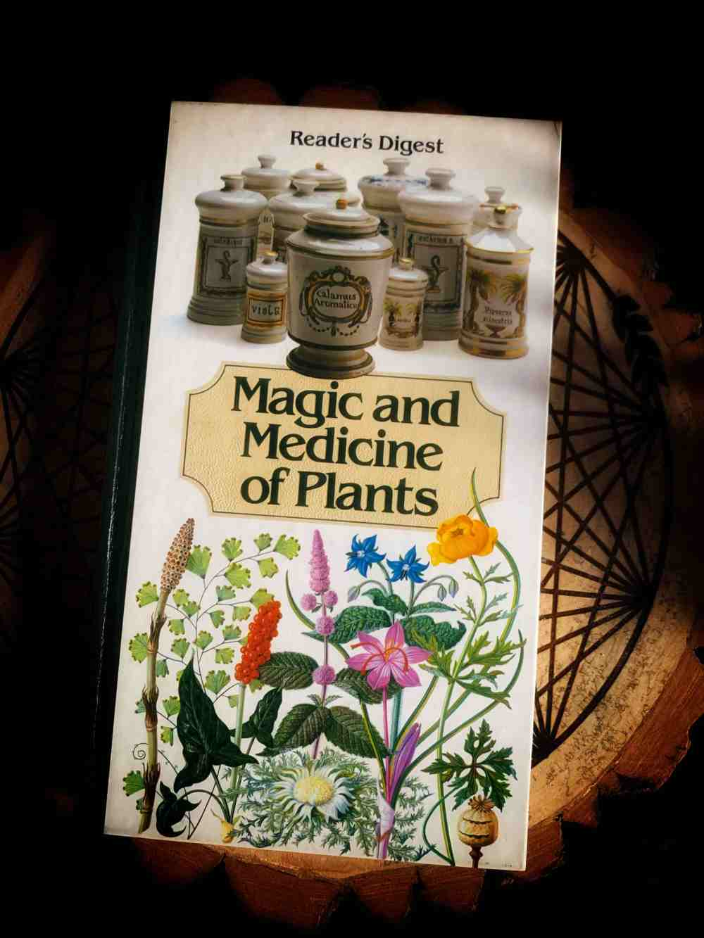 Magic Medicine Plants