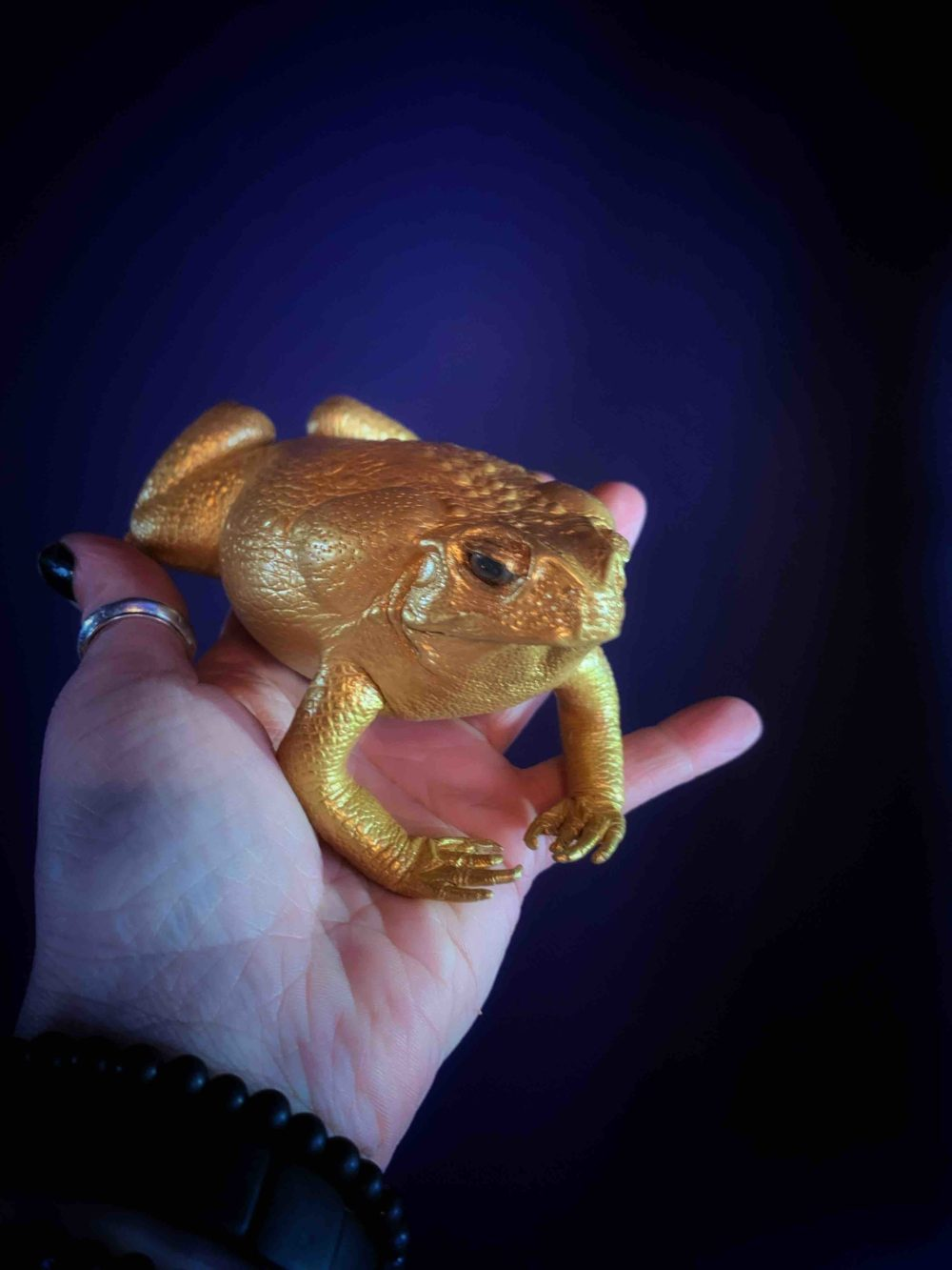 The Golden Money Toad Amulet