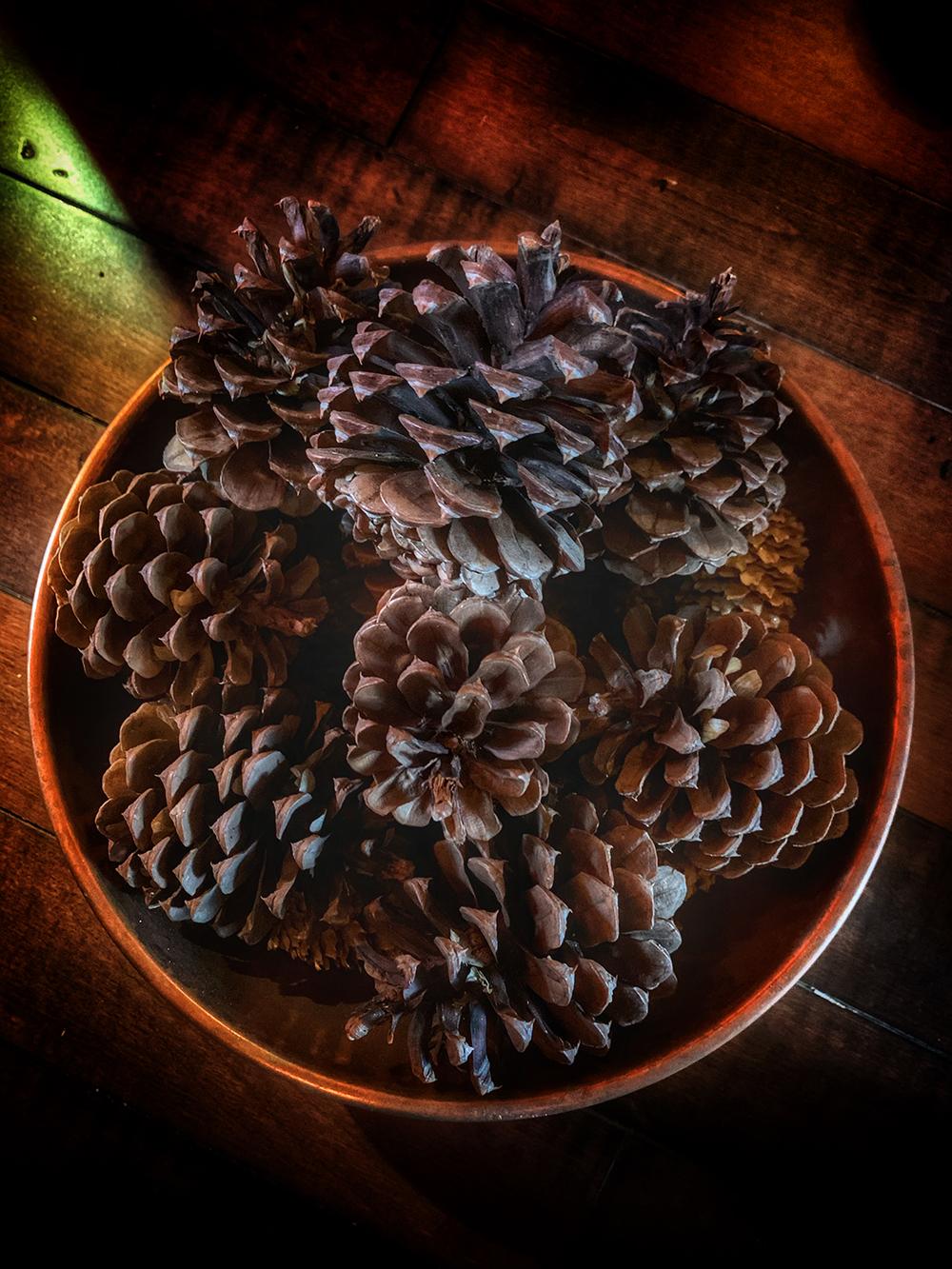 pine cone witchcraft