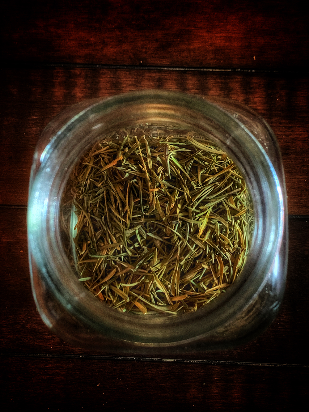 Witches Herbs Yew Needles