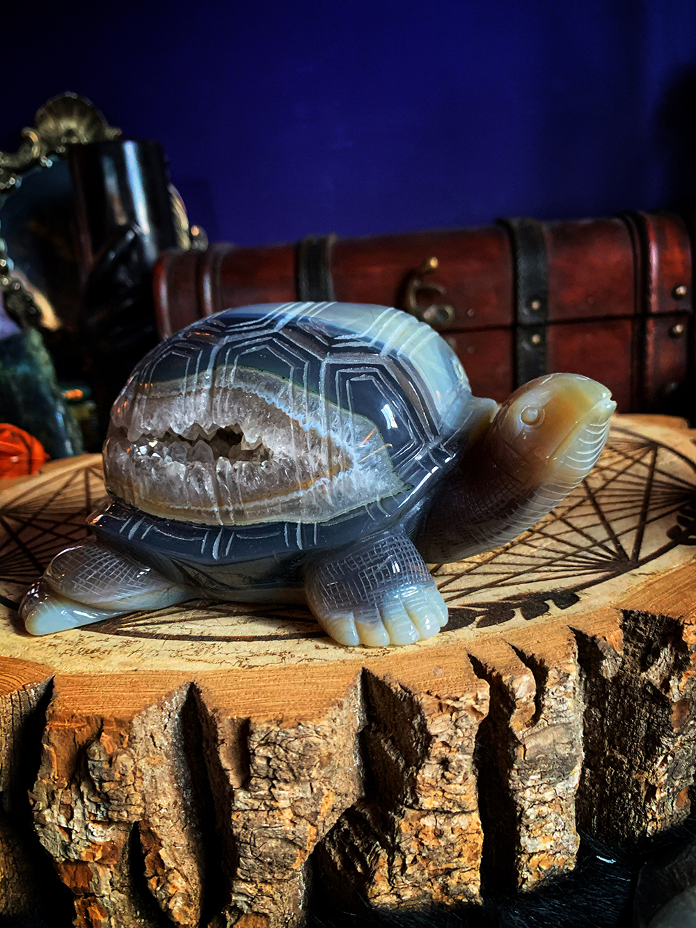 The Druzy Turtle Agate