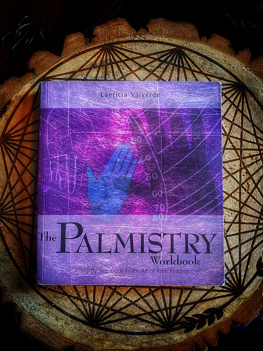 The Palmistry Workbook: A Step-by-Step Guide
