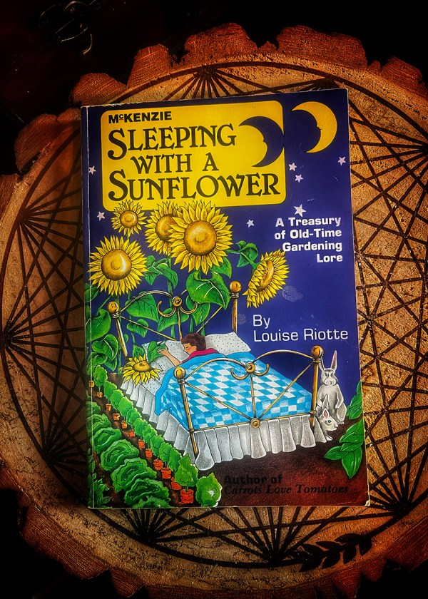 Sleeping With a Sunflower
