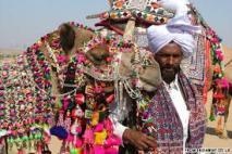 camelpushkar