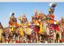 camelspushkar