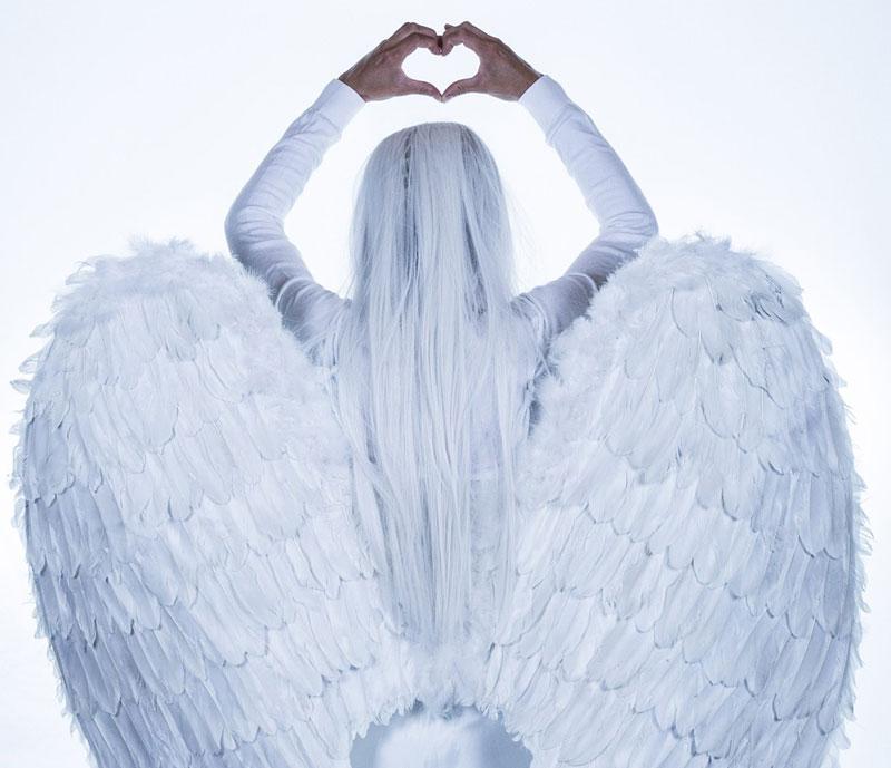 i sogni con le ali