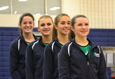Woodgrove Hosts Gymnastics Meet