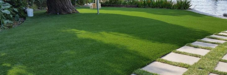 Some Amazing Applications of Fake Grass