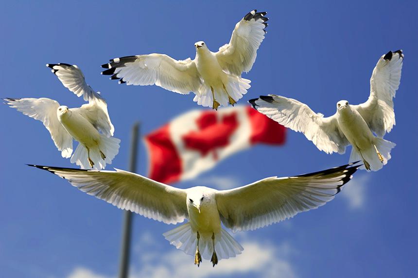 canadá Guía de viajes y visa para Canadá portada viajar a canada