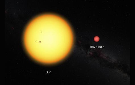 7 Earth sized planets found orbiting dwarf star