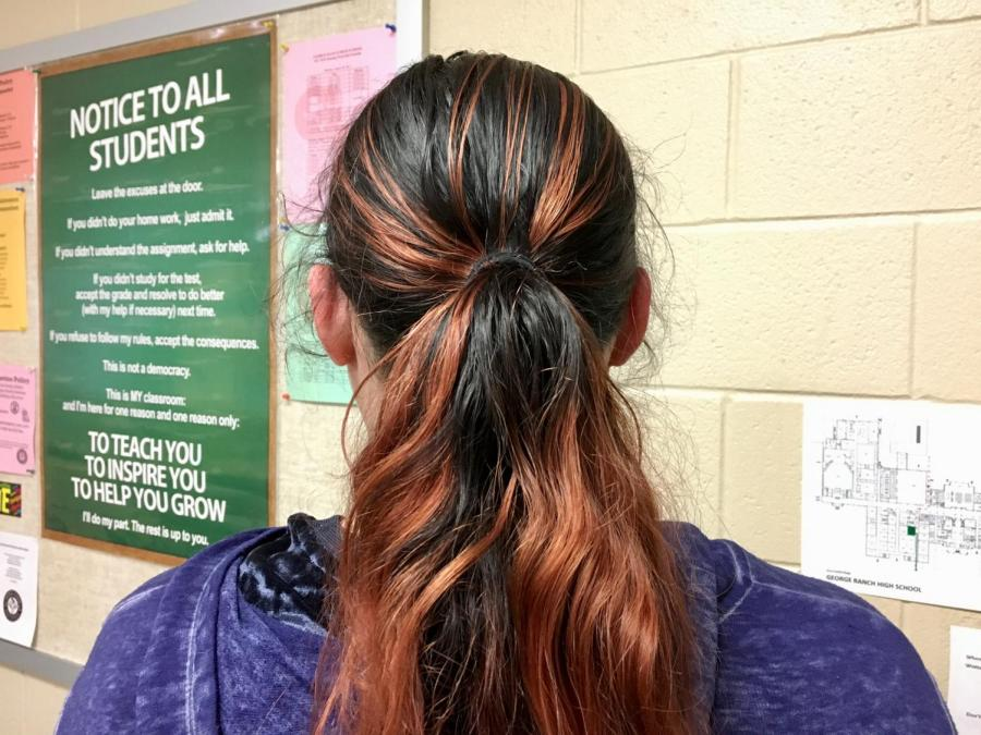 A+student+with+dyed+hair.
