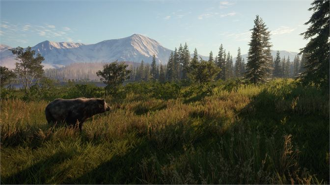 theHunter: Call of the Wild - 2021 Edition Xbox