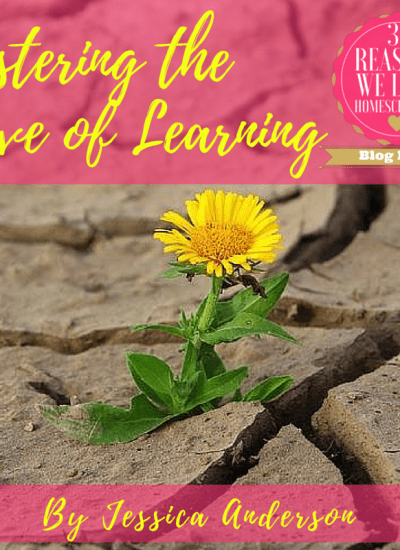 Flower in the Desert: Fostering the Love of Learning