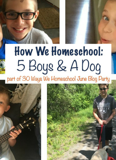 This Is How We Homeschool: 5 Boys & A Dog