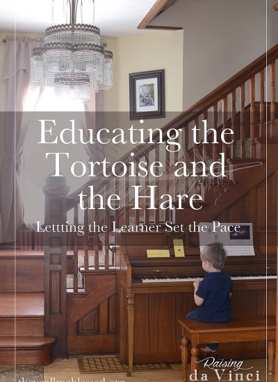 Educating the Tortoise and the Hare