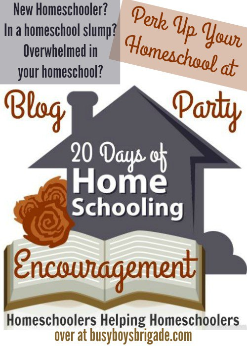 every homeschool mom needs