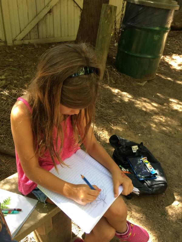 Exploring Nature With Children | Nature Study Curriculum | Nature Study for Homeschool | Explore Nature With Kids | Homeschool Nature Studies | Charlotte Mason Nature Study | Nature Study Resources