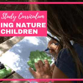 Our Nature Study Curriculum: Exploring Nature With Children.