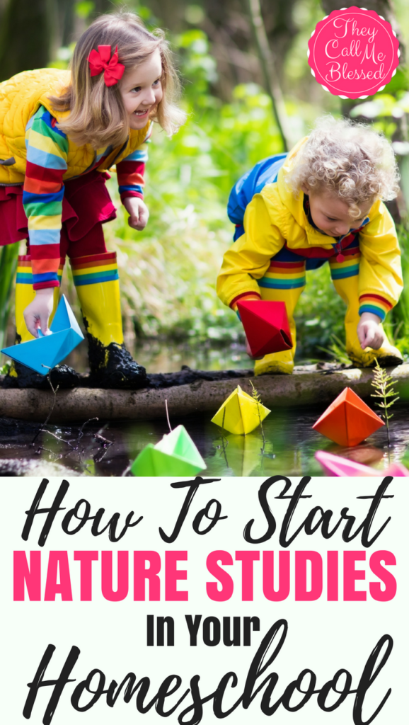 How to Start Nature Studies in Your Homeschool