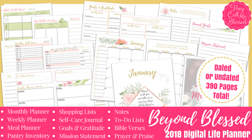 2018 Beyond Blessed Life Planner