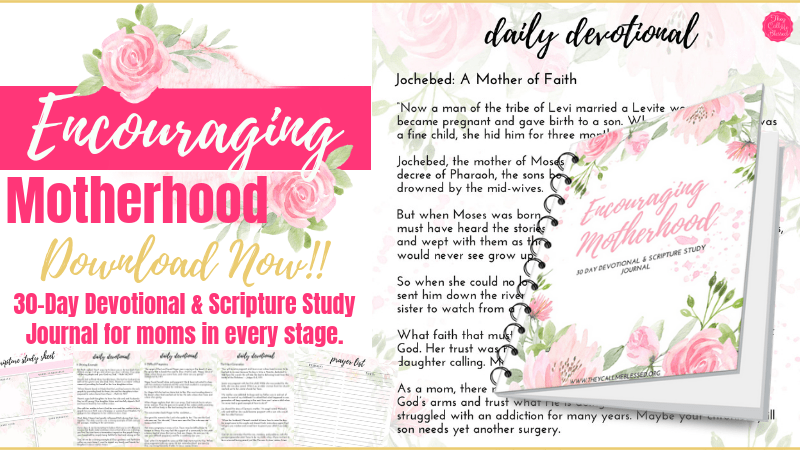 Encouraging Motherhood Devotional and Scripture Study Journal
