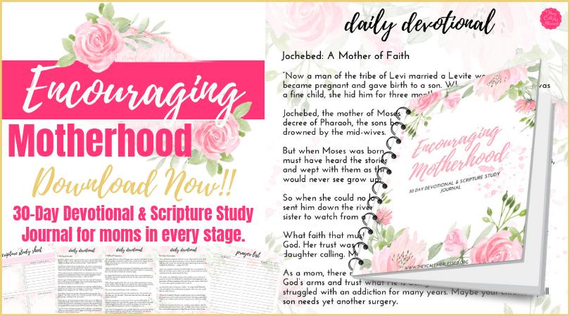 Encouraging Motherhood Devotional & Scripture Study Journal