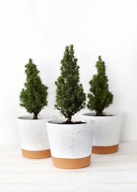 25 handmade Christmas gift ideas on a budget. DIY Splatter planters. Cute gifts for plant lovers.