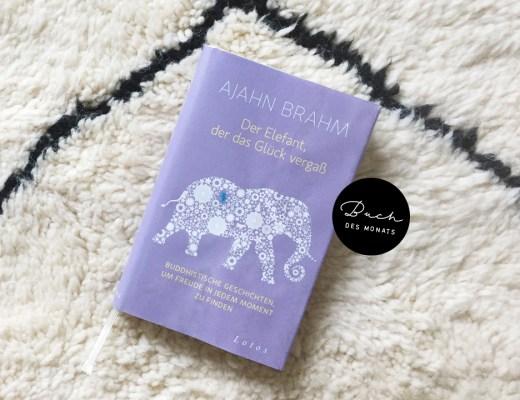 Ajahn Brahm Der Elefant, der das Glück vergaß: Buddhistische Geschichten, um Freude in jedem Moment zu finden Buch des Monats Juli Lesetipp Empfehlung