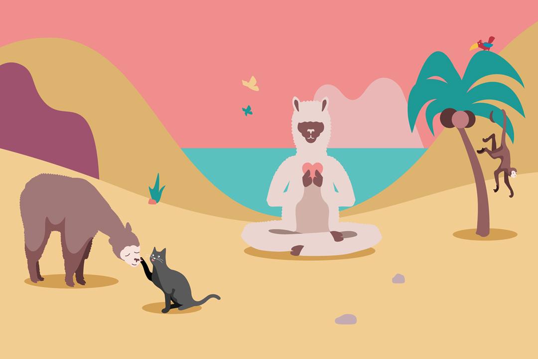 MindRide Community Mindfulness Achtsamkeit Yoga Meditation Sangha Berlin Start-Up