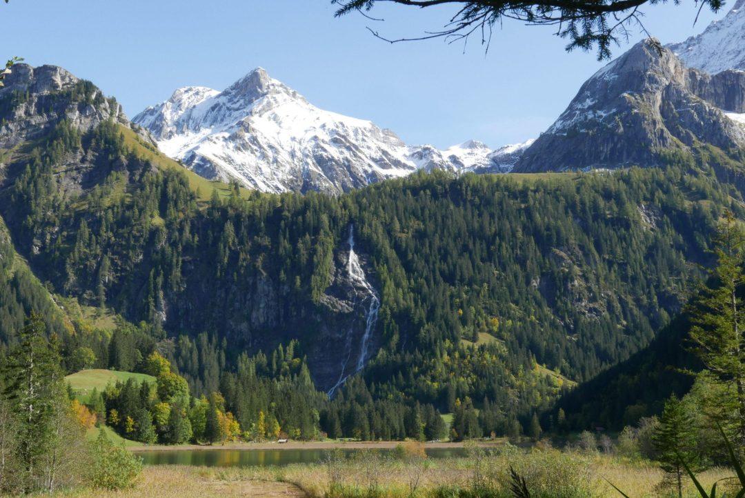 Gstaad Saanenwald Waldbaden Retreat