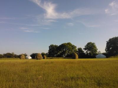 yurts at haymaking time
