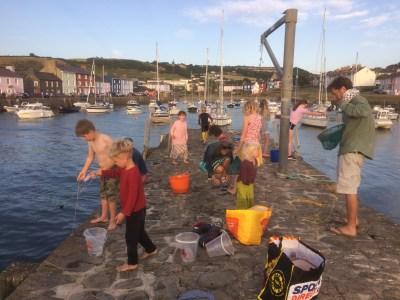 Crabbing in Aberaeron