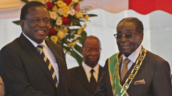 Mugabe hit me: model