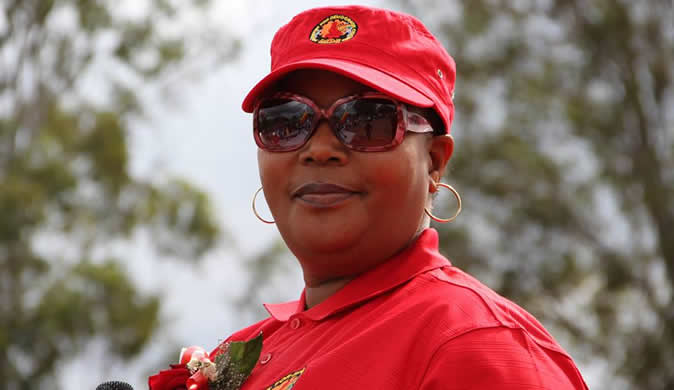 Zimbabwean opposition MDC picks acting leader