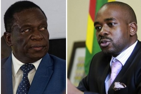 Image result for Zimbabwe's presidential poll lacks credibility, legitimacy - Chamisa