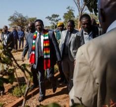 Watch: President Mnangagwa behind machete killings in Zimbabwe's goldfields