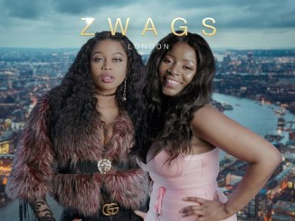 Watch ZWAGS the zimtainment